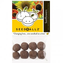 Seedballz Sunflower - 8 Pack